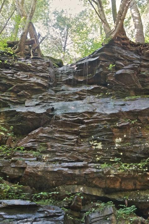Impressive cliffs above Big Falls