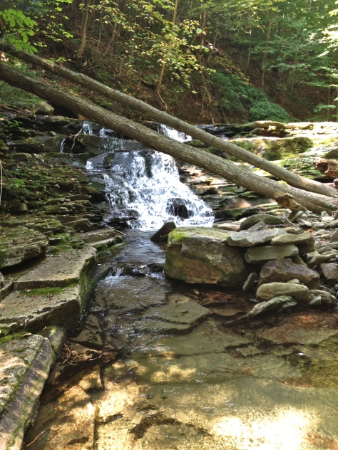 Small waterfall on Shanty Run