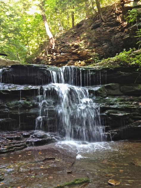 Small waterfall on Sullivan Branch