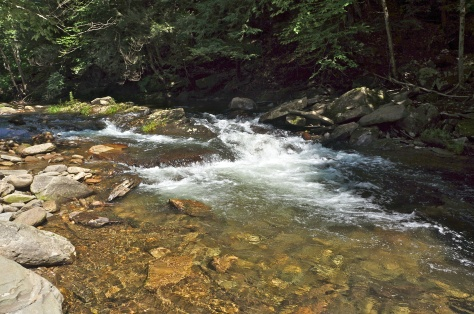 Rock Run, Loyalsock State Forest