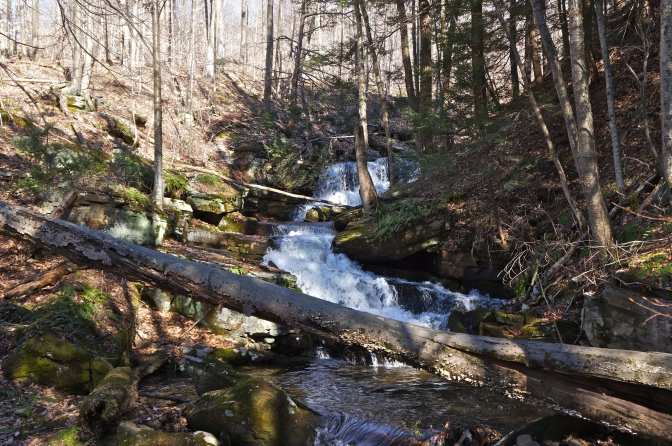 Lackawanna State Forest: Panther Hill, Painter Creek, and Panther Creek