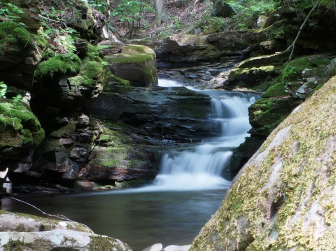 Loyalsock State Forest: Scar Run