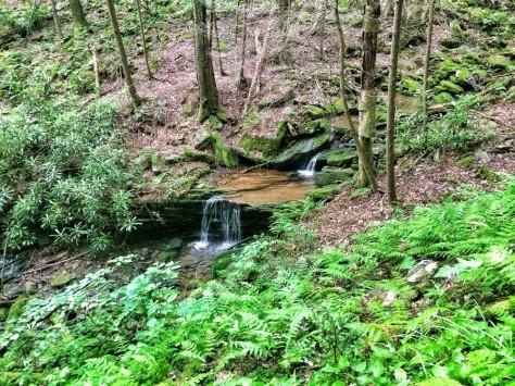 Jacob's Hollow cascade