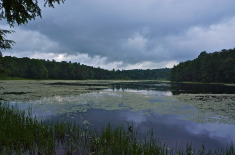 Bearwallow Pond