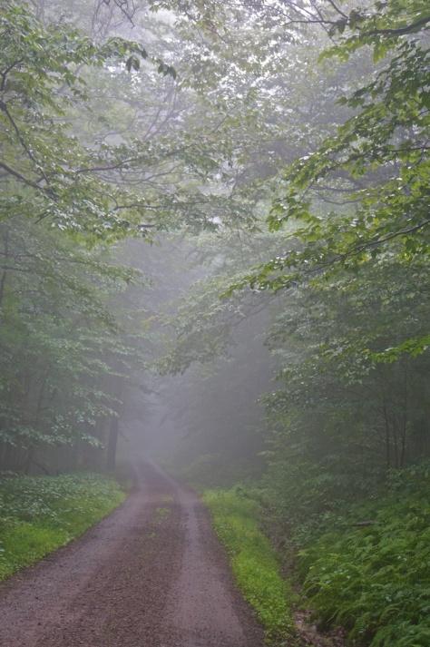 Merrell Road