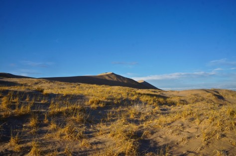 Low sun on the dunes