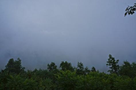Sharp Top Vista in the rain
