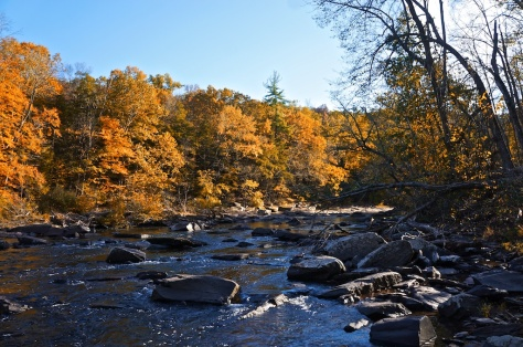 tohickon creek, ralph stover state park
