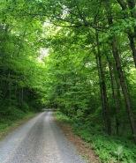 Hillsgrove Road