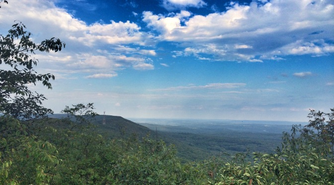 Appalachian Trail: Tott's Gap Out and Back