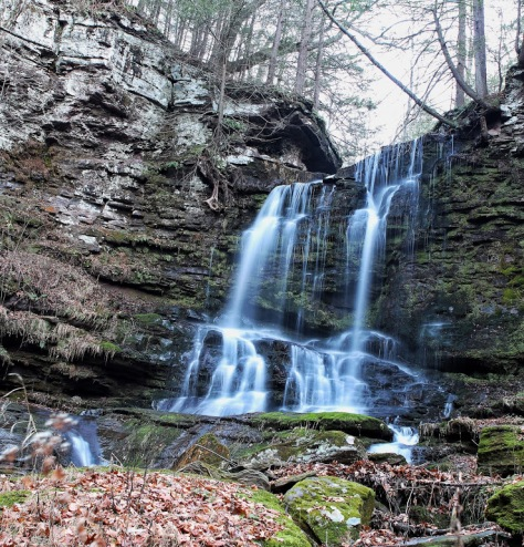 Bowman Hollow Falls